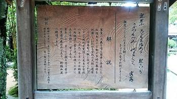 280_10月13日松陰神社 (6).JPG