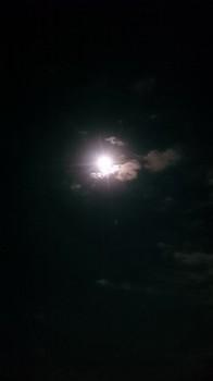 名月 (1).JPG