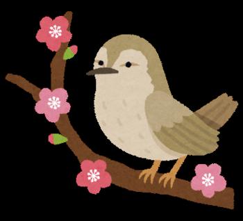 春告鳥.png