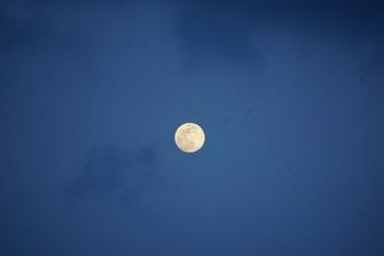月は東に日は西に (1).JPG