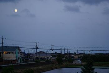 月は東に日は西に (2).JPG