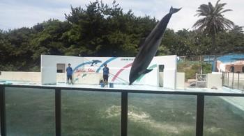 犬吠埼マリンパーク (4).JPG