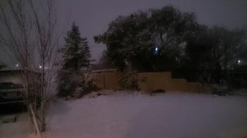 雪の庭.JPG