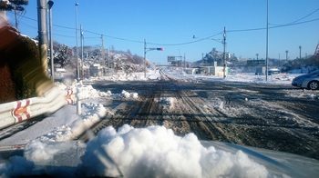 雪の朝 (3).JPG