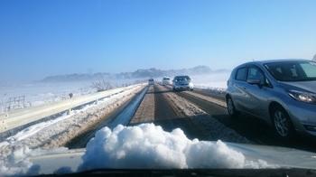 雪の朝 (4).JPG