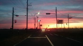 冬夕焼 (1).JPG