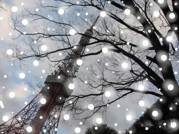 名残の雪 (1).jpg