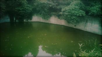 地獄の池.JPG