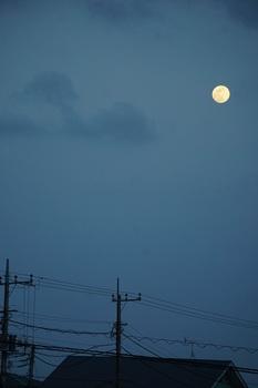 月は東に日は西に (3).JPG