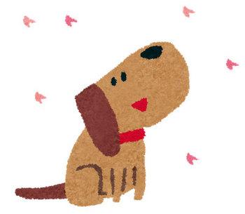 犬 桜 (1).jpg