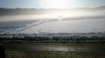雪の朝 (1).JPG