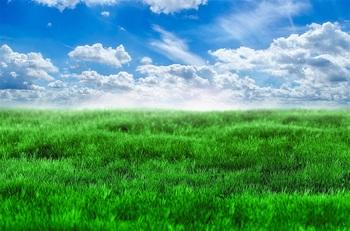 green-grass-and-blue-sky-1398454014G2m.jpg